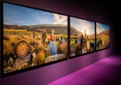 """""""Purple"""", John Akomfrah - vista da exposição / view of the exhibition"""