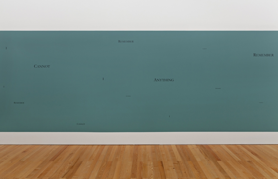 Douglas Gordon, I Cannot Remember Anything, 1993