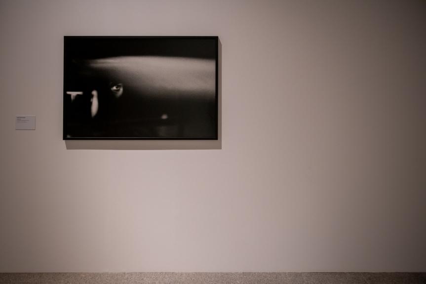 Paulo Nozolino, Lisboa, 1979. Exposição Matéria Luminal / Exhibition Luminous Matter, Museu Coleção Berardo Foto/ Photo: Rita Carmo, vista da exposição / view of the exhibition